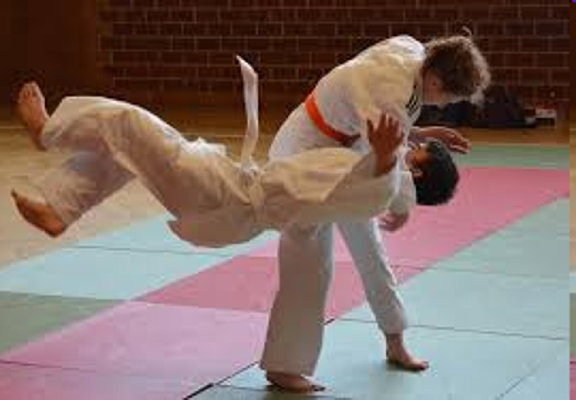 Neuer Kurs für die ganze Familie: Ju-Jutsu
