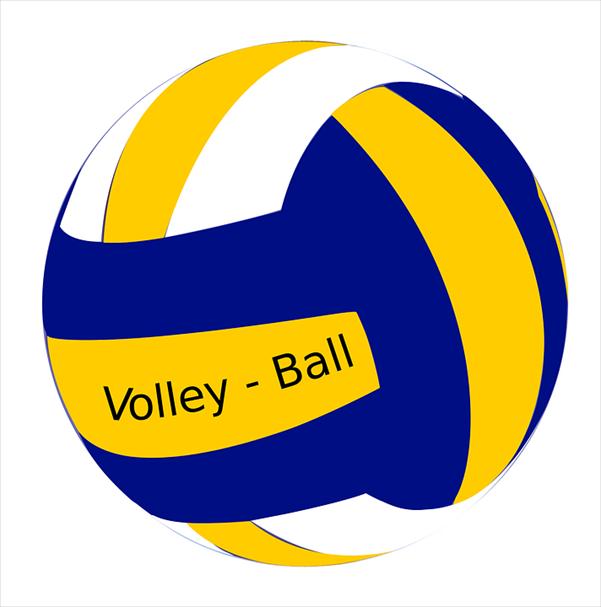 Neuer Kurs für Teamplayer: Volleyball